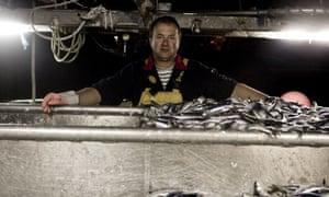 Stefan Glinski-Sardine Fisherman