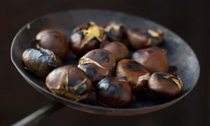 Chestnuts roasting on a metal plate