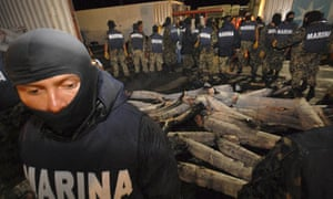 Mexican naval officers stand guard after cutting open shark carcasses filled with cocaine