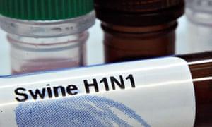 Test kits for swine flu