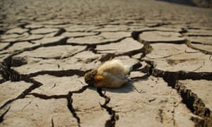 Severe drought grips Southern China
