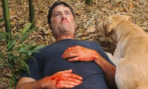 Matthew Fox and Madison the dog in Lost