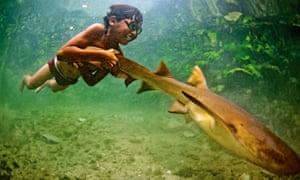 boy with shark
