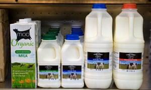 Milk bottles on sale