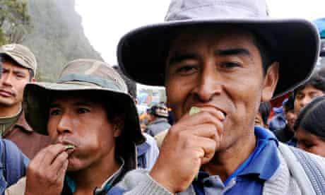 Bolivians chew coca leaf