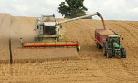 Combine harvester gathering its crop on arable farmland