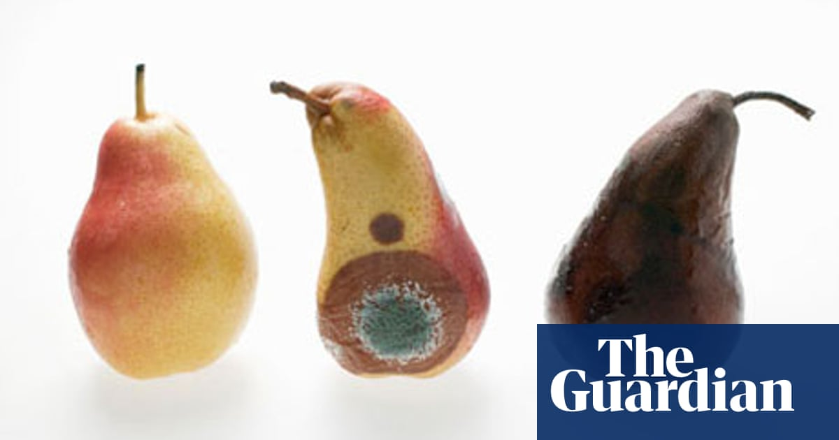 Spoilt rotten: good and bad mould | Food | The Guardian