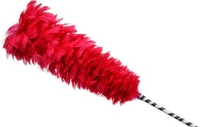 Red Feather duster feathers at the end of a pole