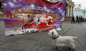 A dog by a poster reading, 'We were killed for Euro 2012' on World Animal Day in Kiev