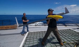 whale wars download
