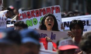 Peru demonstrators