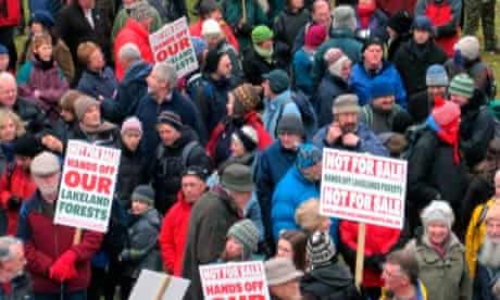 Grizedale forest protests