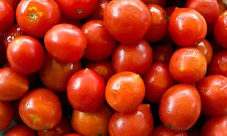 Pachino tomatoes