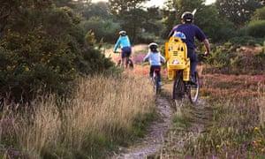 Family cycling along heathland tracks in Dorset