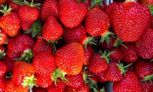 Clergyman Francis Kilvert wrote in his diary about gathering strawberries on Midsummer Day in 1875.