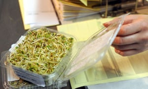 German bean sprouts cleared of E coli in Germany
