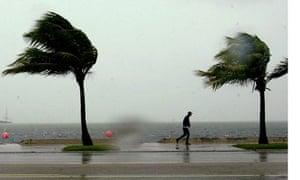 Palm trees and a man fight the wind and the rain in the Florida Keys