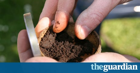 It's not snuff, it's not snout … it's Snus | Society | The Guardian