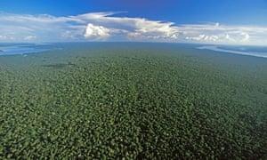 The Amazon Rainforest near Nova Olinda, Brazil, seen from the air