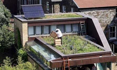 An urban beekeeper in London