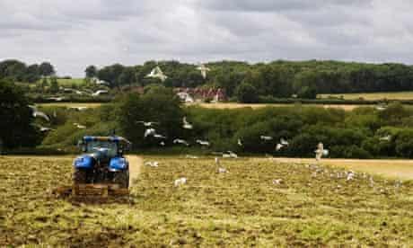 A farmer ploughing a field