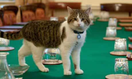 Larry the cat arriving at Downing Street, London, Britain - 15 Feb 2011
