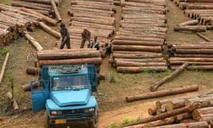 Loggers in Burma