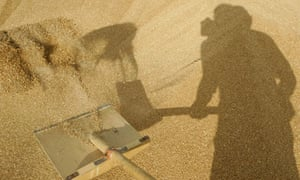 A man shovels grain at a farm in Vasyurinskoe as Russia's harvest suffered in the drought of 2010