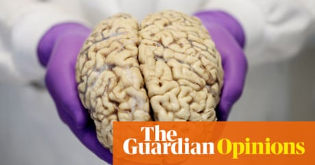What the McLean brain bank malfunction means for autism research ...