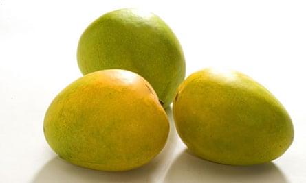 Alphonso mangoes 008