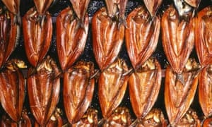 Rows of kippers in a smoking oven.