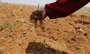 North Korean drought
