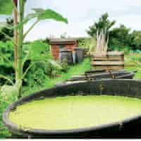 Gardens: weed bins