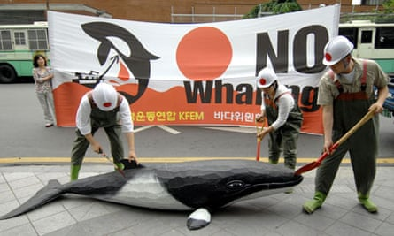 South Korean anti-whaling activists
