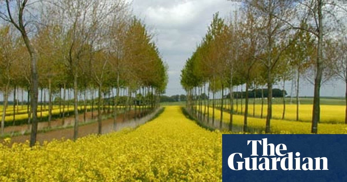 Trees breathing new life into French agriculture
