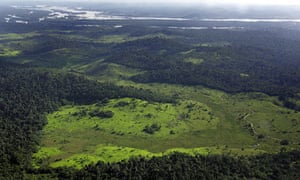 Deforested area of the raainforest in northern Brazil