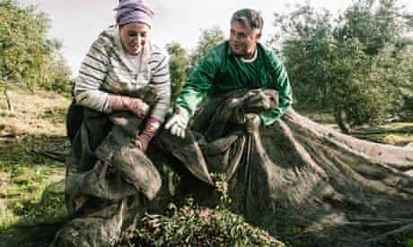 Workers in the Olive groves of El Humoso, Marinaleda