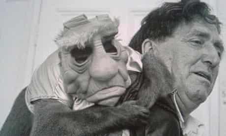 Star Wars Yoda monkey