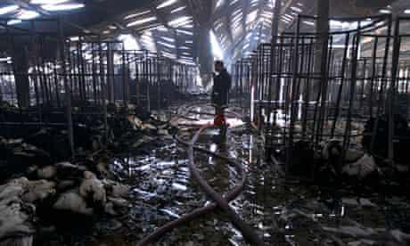 Factory fire kills at least nine in Bangladesh