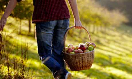 Atkinson's Cornish Orchards … at the heart of the region's food revolution.