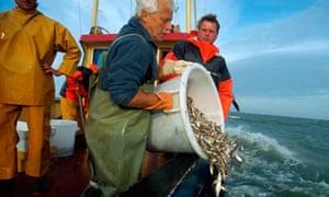 Fisherman throws back fish