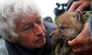 Jean Jacques Annaud on the set of his film, Wolf Totem.