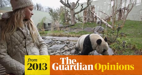 Pandas Have Saved Edinburgh Zoo From Extinction But What For Fraser Macdonald The Guardian