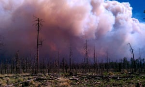 A wildfire at Gila National Forest, New Mexico