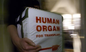 A special box for tranporting human organs at Dulwich