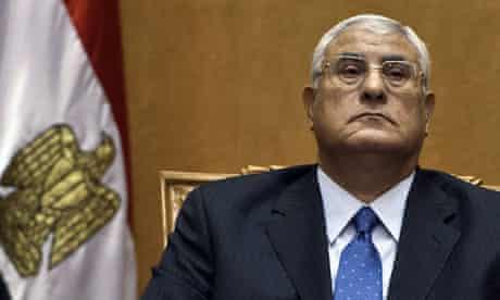 Egypt's new interim president Adly Mansour