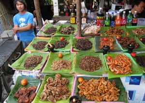 Market stall with many insects for sale