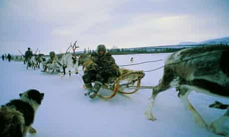 Reindeer caravan of Evenk people in Siberia