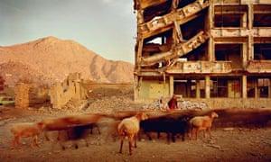 Simon Norfolk, bullet-scarred apartment block, Kabul