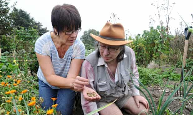 SAGE Greenfingers horticultural therapy project
